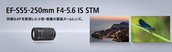 55_250.jpg