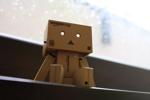 danbo_rain_02.jpg